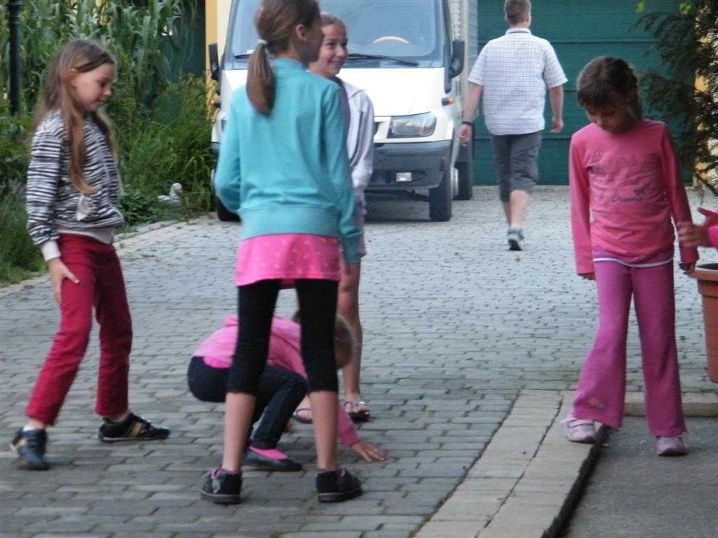 2011<br />Májusfa kiszedés